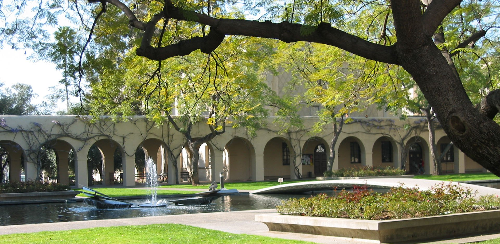 How To Write The Caltech Essays A Guide College Application Success