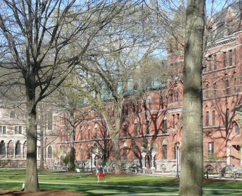how to get into harvard and ivy league