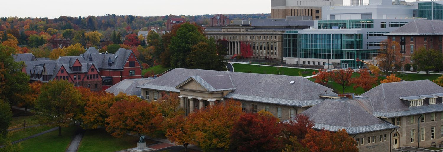 The Cornell Acceptance Rate & More Vital Info About Cornell